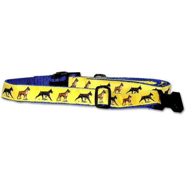 Boxer Collar and Leash Set