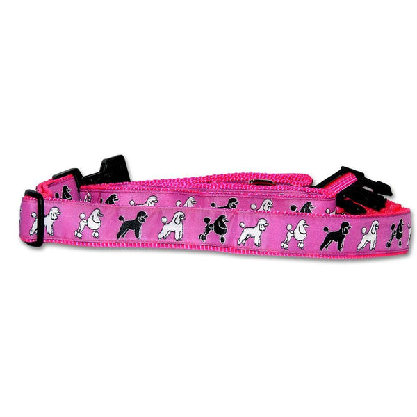 Portuguese Water Dog Collars