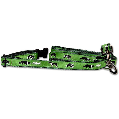 Border Collie Collar and Leash Set