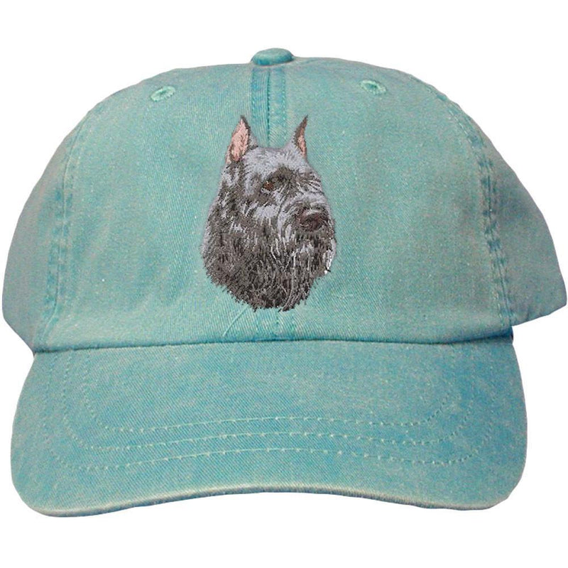 Embroidered Baseball Caps Turquoise  Bouvier des Flandres D105