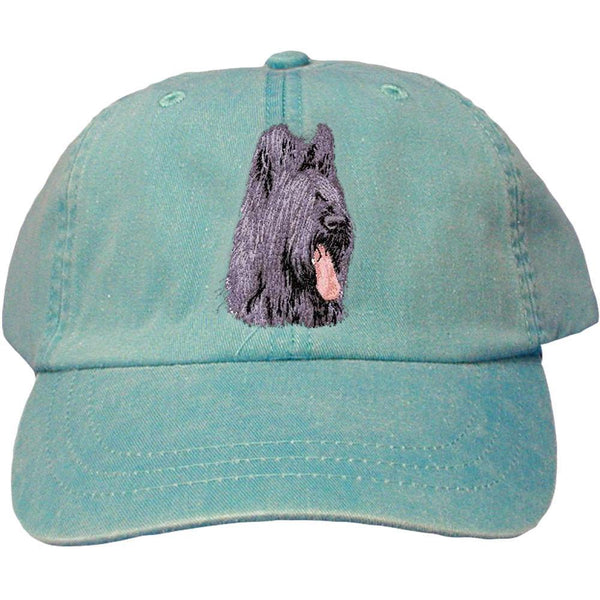 Embroidered Baseball Caps Turquoise  Briard D72