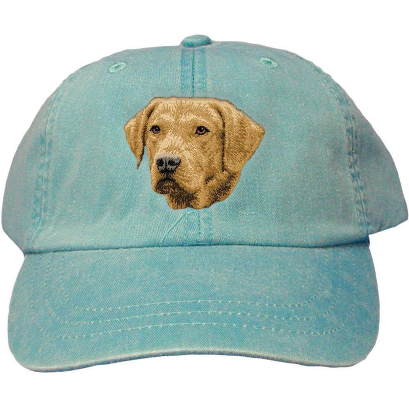 Embroidered Baseball Caps Turquoise  Chesapeake Bay Retriever D143