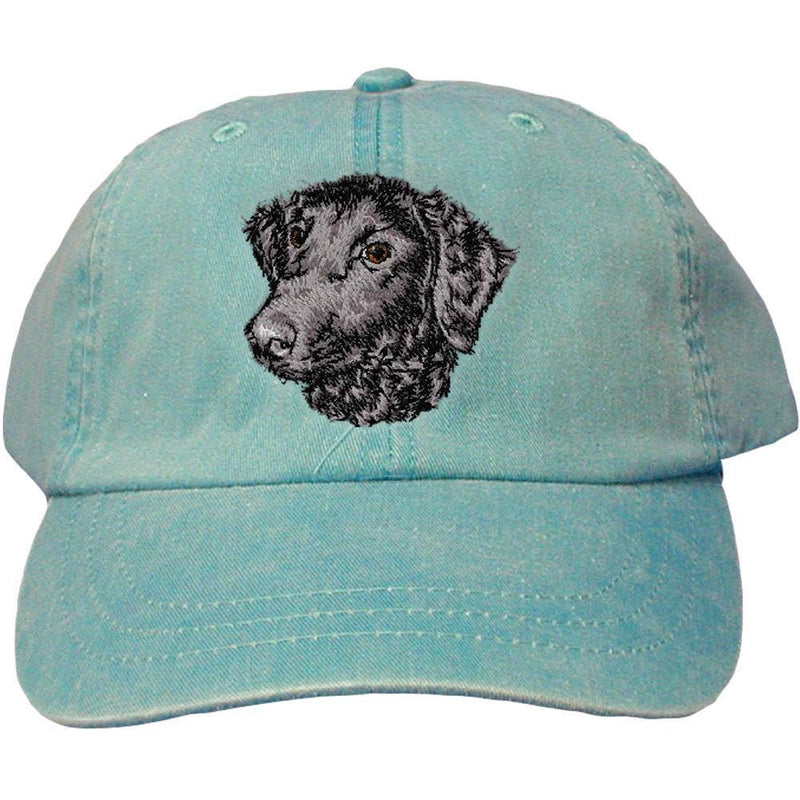 Embroidered Baseball Caps Turquoise  Curly Coated Retriever D137