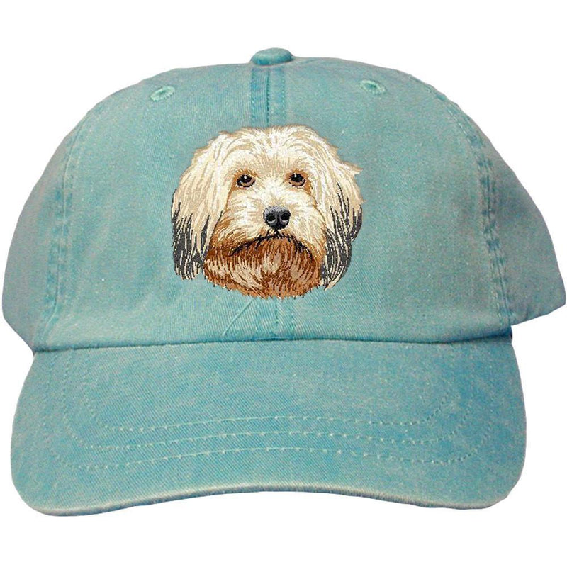 Embroidered Baseball Caps Turquoise  Havanese DV372