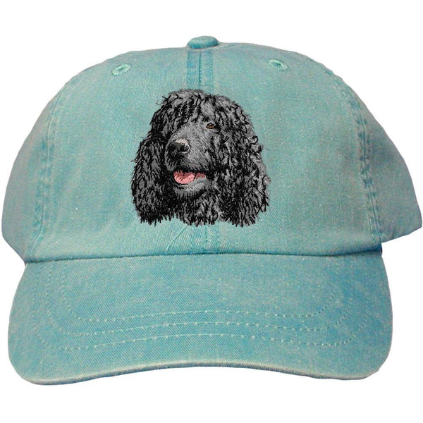Embroidered Baseball Caps Turquoise  Irish Water Spaniel D145
