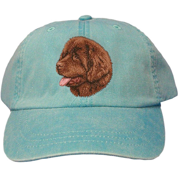 Embroidered Baseball Caps Turquoise  Newfoundland D36