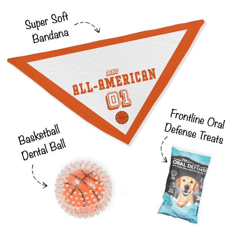 """Bark Madness"" - All-American Group Bandana Bundle"
