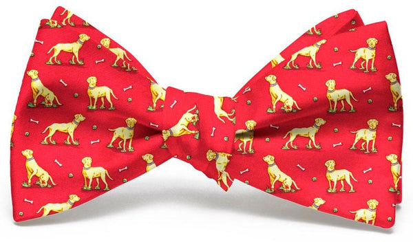 Labrador Retriever Bow Tie