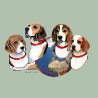Beagle's World Memory Box