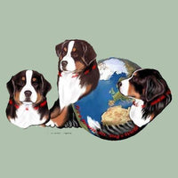 Bernese Mountain Dog's World Box