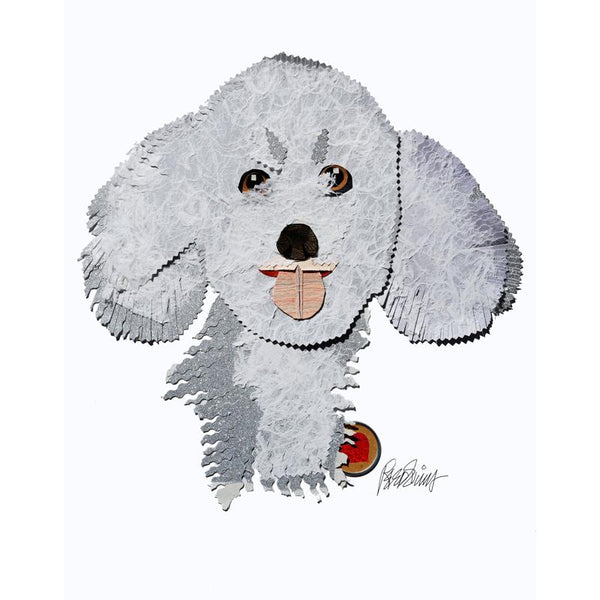 Reed Evins Bichon Frise Dog Collage