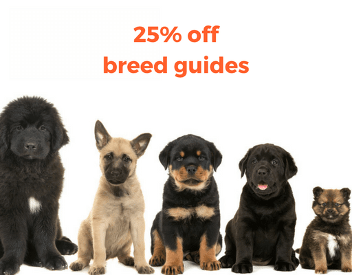 https://shop.akc.org/collections/collections-sale-breed-guides