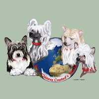 Chinese Crested's World Box