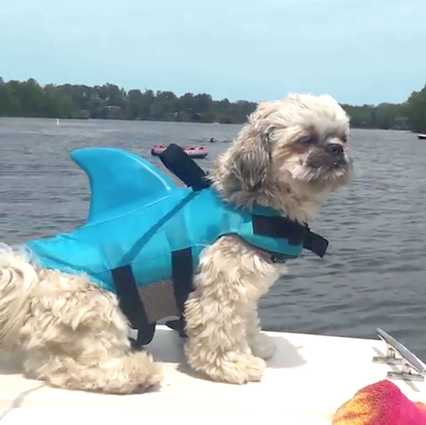 Dog Life Vest With Fin
