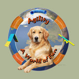 Golden Retriever Agility Box