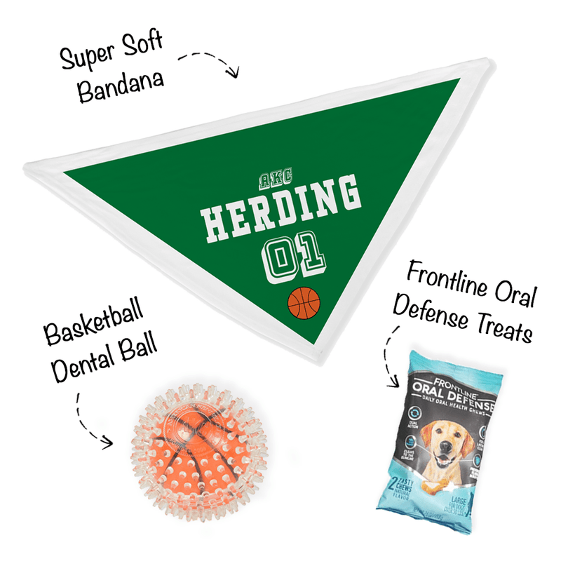 """Bark Madness"" - Herding Group Bandana Bundle"