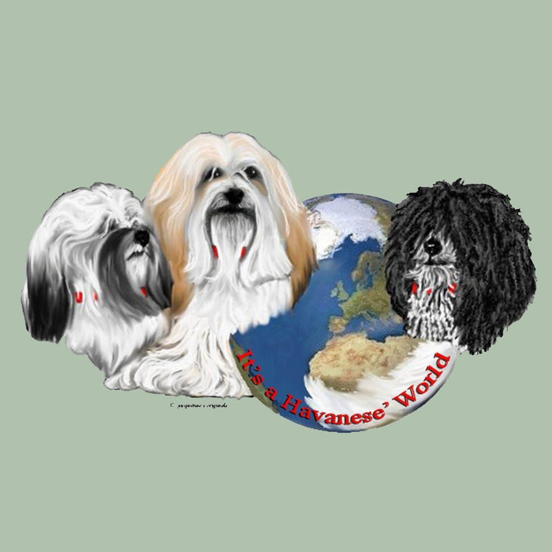 Havanese's World Box