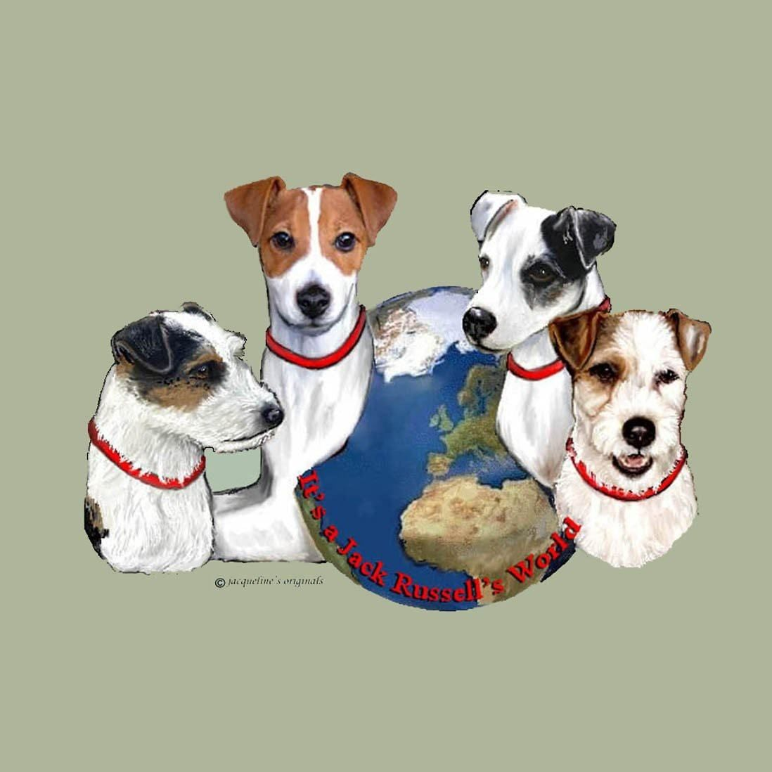 Russell Terrier S World Box Akc Shop