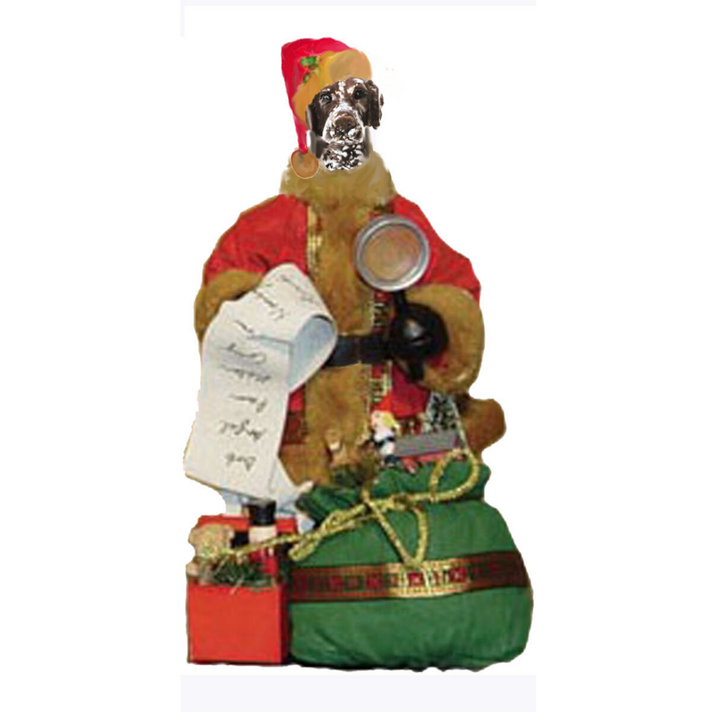 German Shorthaired Pointer Toy List Santa Statue