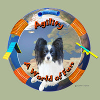 Papillon Agility Box