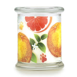 Ruby Red Grapefruit Large Candle