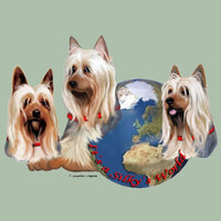 Silky Terrier's World Box