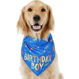Frisco Birthday Boy Dog Bandana, One Size