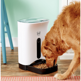 Arf Pets Automatic Dog & Cat Feeder, 4-meal