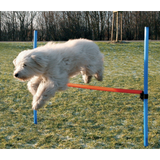 Trixie Agility Dog Training Hurdle