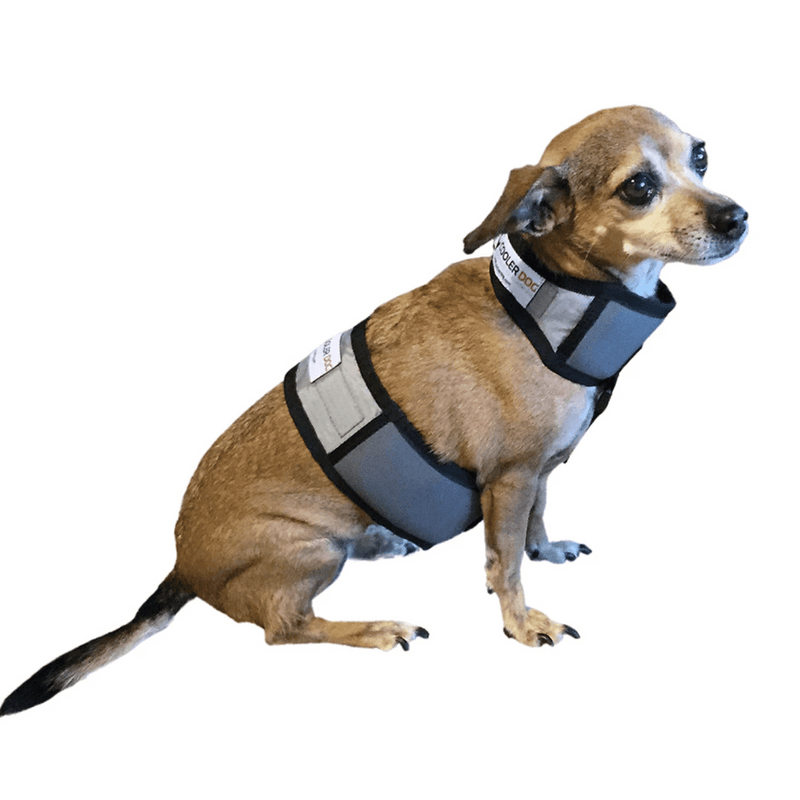 Cooling Vest and Collar