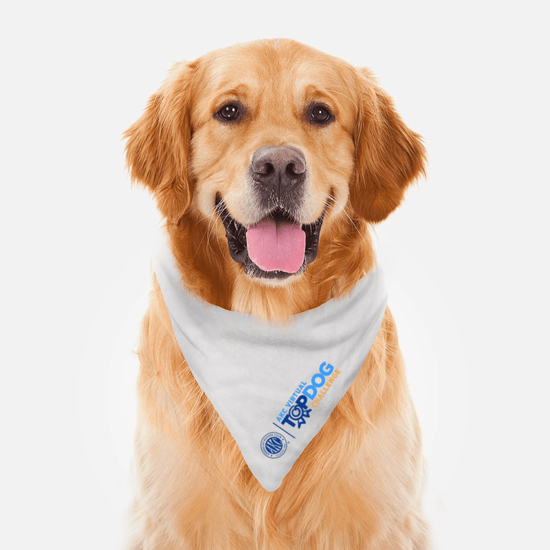 AKC Virtual Top Dog Challenge Dog Bandana