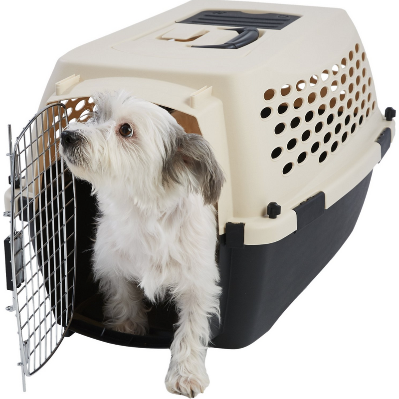 Frisco Plastic Dog Kennel, Almond & Black