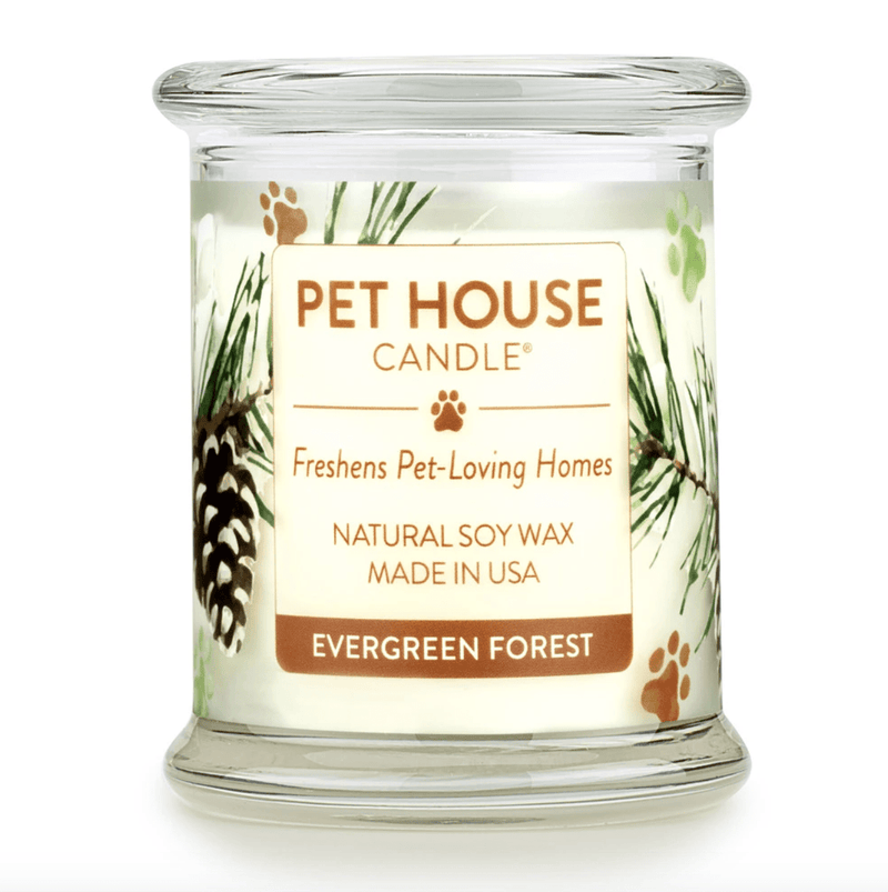 Evergreen Forest Large Candle