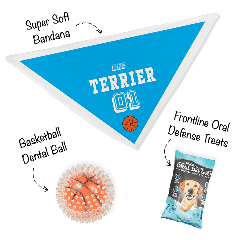 """Bark Madness"" - Terrier Group Bandana Bundle"