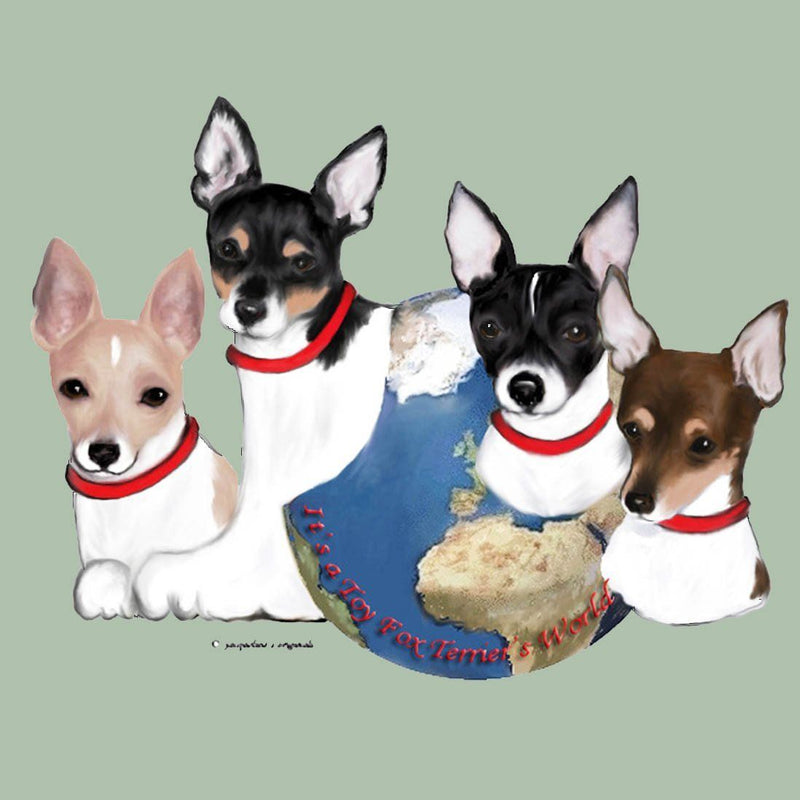 Toy Fox Terrier's World Box