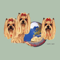 Yorkshire Terrier's World Box