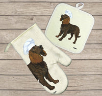 American Water Spaniel Oven Mitt and Pot Holder