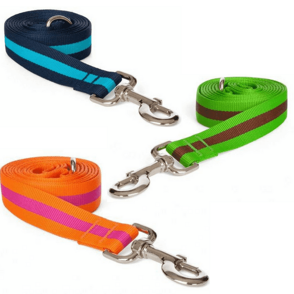 Nylon Classic Stripe Dog Leash