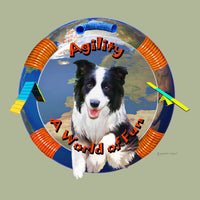 Border Collie Agility Memory Box