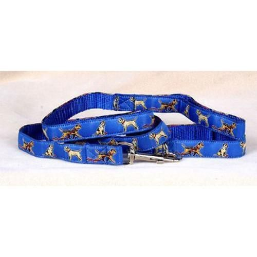 Border Terrier Collar and Leash Set