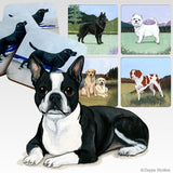 Boston Terrier Scenic Coaster