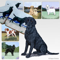 Curly Coated Retriever Scenic Coaster