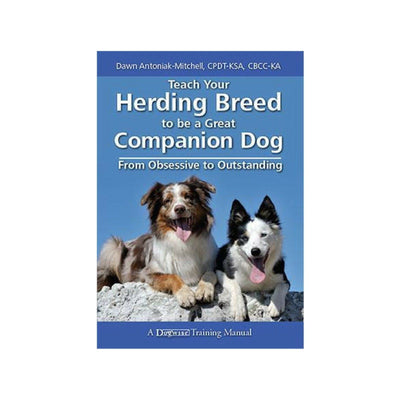 Teach Your Herding Breed to be a Great Companion Dog