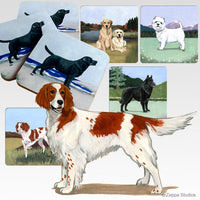 Irish Red and White Setter Scenic Coaster