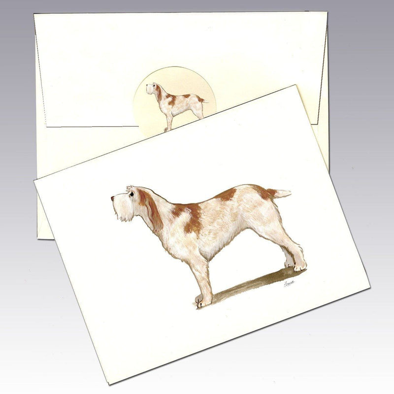 Italian Spinone, Orange Note Cards