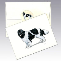 Newfoundland, Landseer Note Cards
