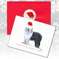 Old English Sheepdog Christmas Note Cards