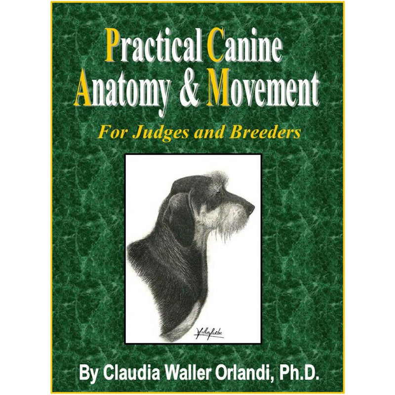 Practical Canine Anatomy & Movement