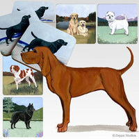 Redbone Coonhound Scenic Coaster
