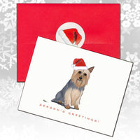 Silky Terrier Christmas Note Cards